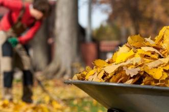 Končí leto - nastal čas jesenného upratovania záhrady!